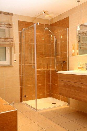 Vonios kambario su dušu interjeras