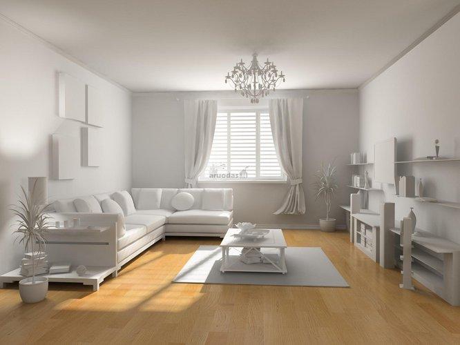 Baltos svetainės dizainas
