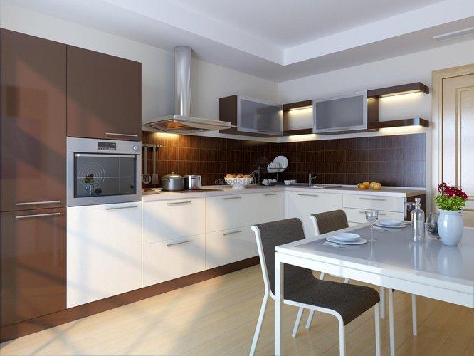 Modernių formų virtuvė