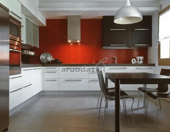 Raudonas akcentas nespalvotoje virtuvėje