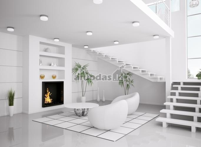 Balto interjero su keletu juodų akcentų dizainas