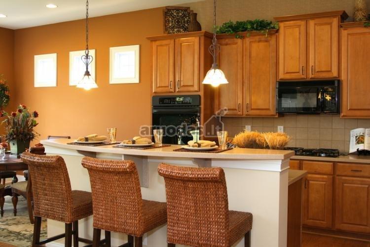 Ruda virtuvės interjere