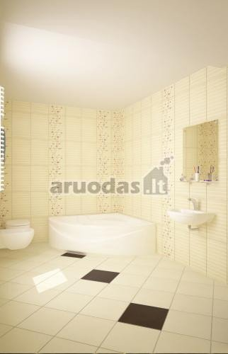 Blankus vonios interjeras
