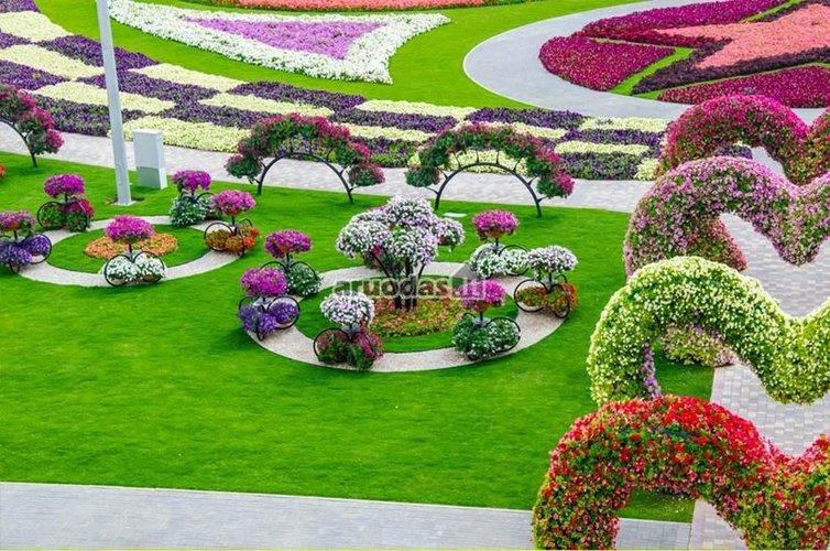 įvairiaspalvių gėlių parkas