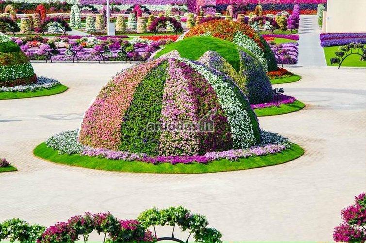 Kalneliai iš gėlių