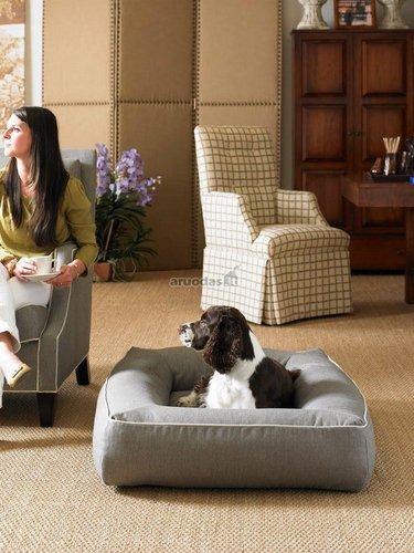 Patogus šuns krėslas, priderintas prie interjero
