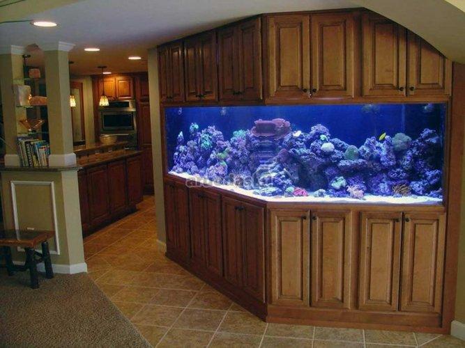 Didelis akvariumas kambario interjere