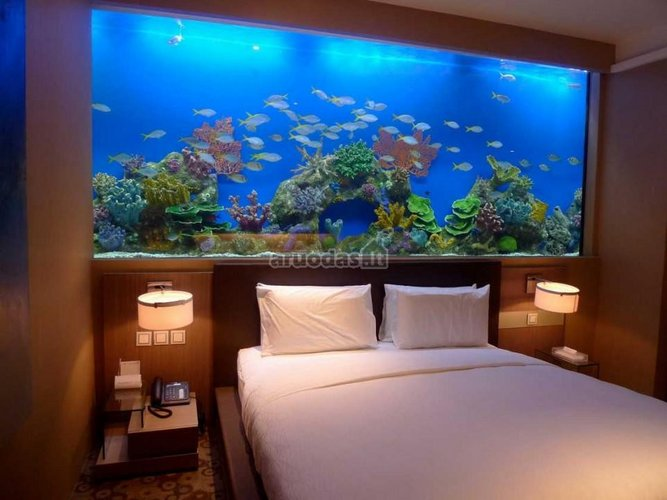Akvariumas per visą miegamojo sieną