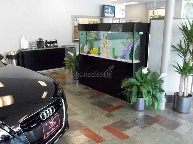 Akvariumo dizianas automobilių servise