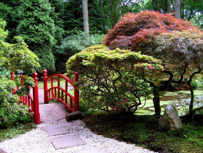 Dekoratyvinių medžių sodas