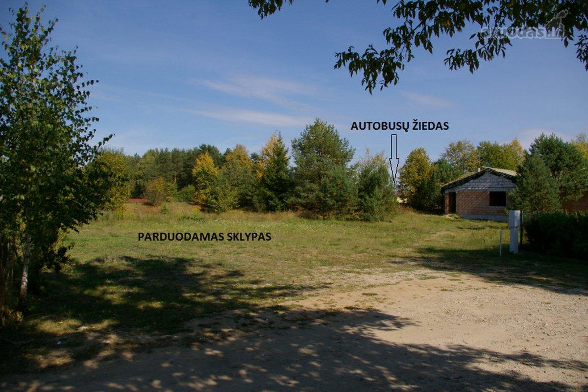 Vilnius, Balsiai, Pagubės Sodų 16-oji g., kolektyvinis sodas sklypas