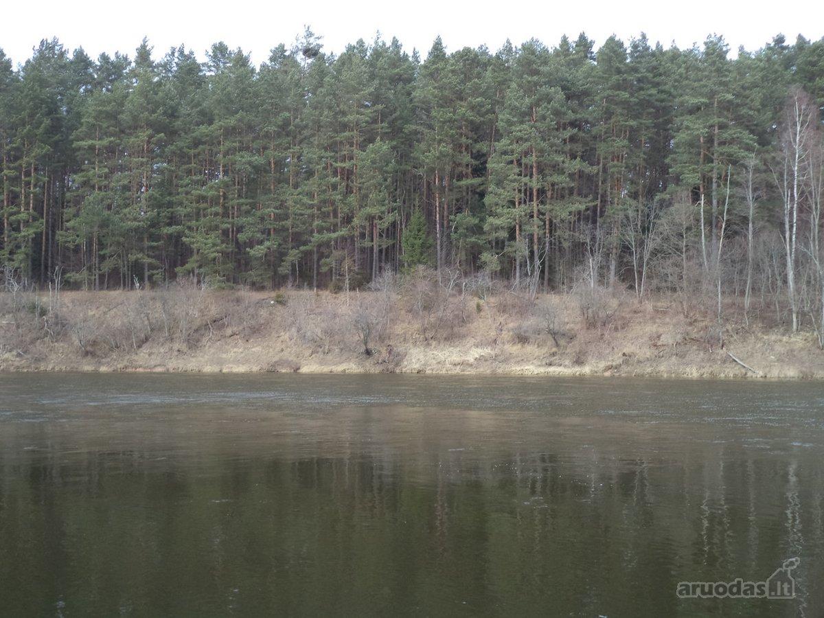 Vilniaus raj. sav., šalia Nemenčinės,