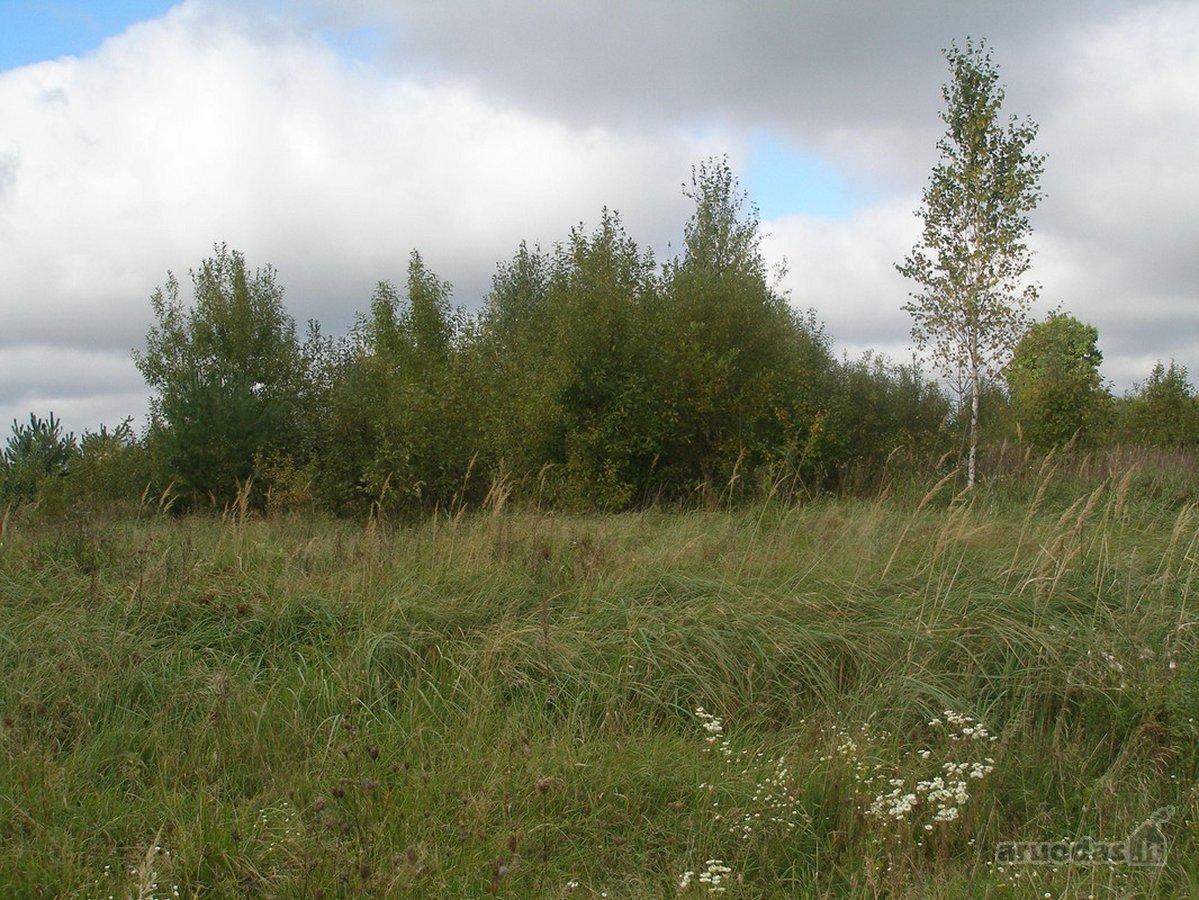 Vilniaus r. sav., Airėnų II k., žemės ūkio paskirties sklypas