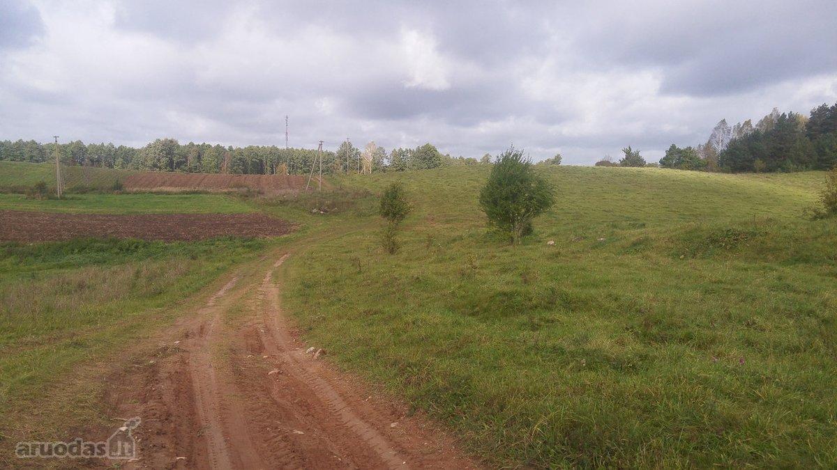 Alytaus r. sav., Taručionių k., žemės ūkio paskirties sklypas