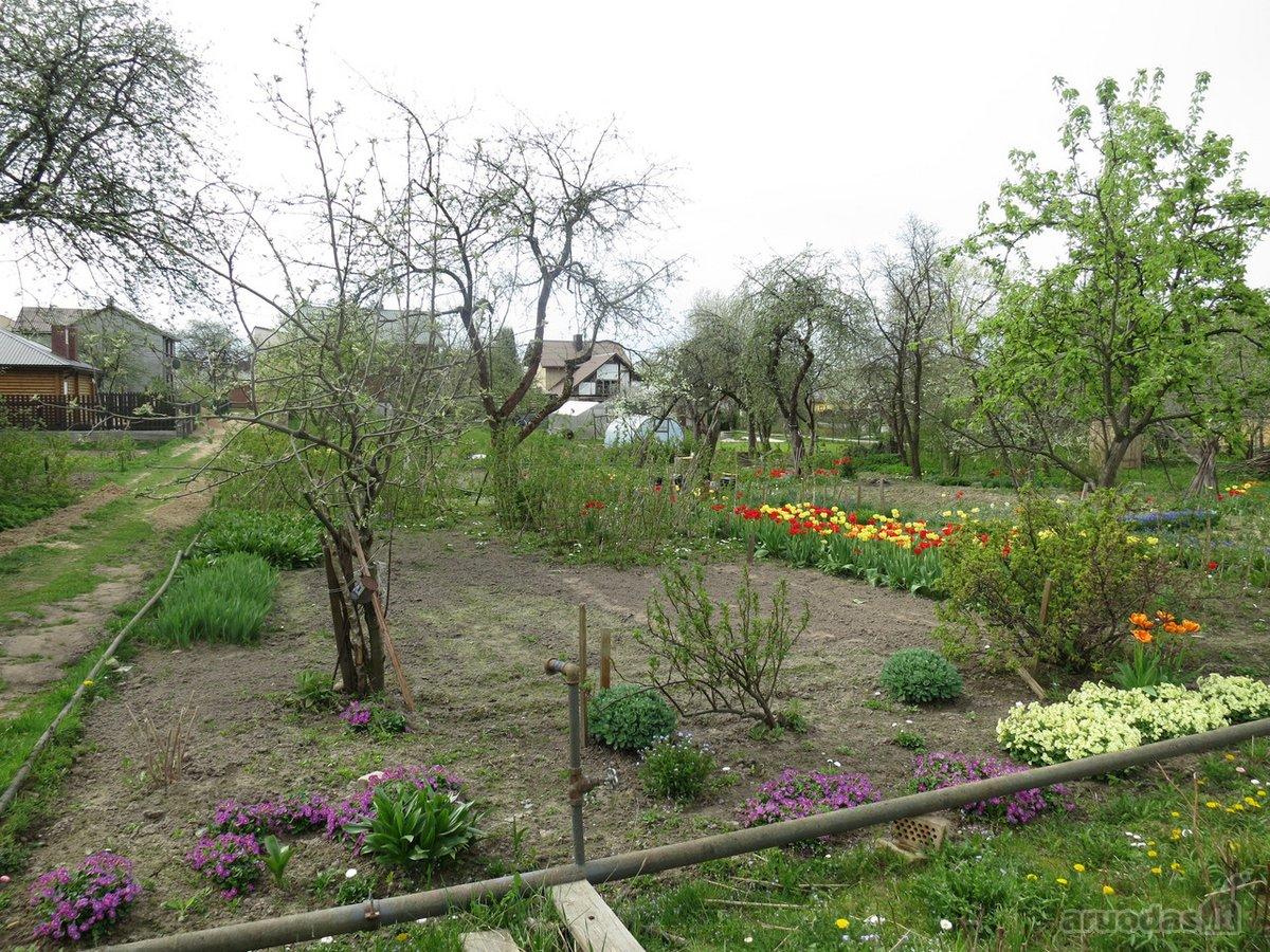 Vilnius, Pavilnys, Paeglinės Sodų 2-oji g., kolektyvinis sodas sklypas