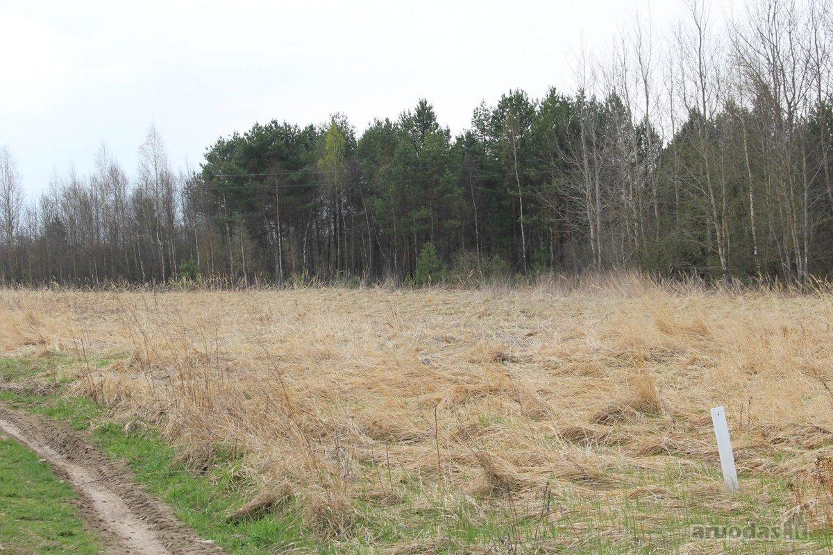 Vilniaus r. sav., Naujasėdžių k., Naujasėdžių g., žemės ūkio paskirties sklypas