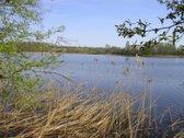 Utenos rajoneprie Šiekščio ežeroparduodami