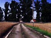 Išnuomojama kaimo turizmo sodyba pobuviams.