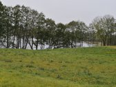 Sklypas prie Galadusio ežero Tarnaukos k.,