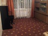 Nuomojamas 2 kambarių butas renovuotame name.