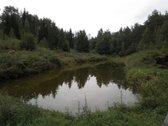 Parduodamas sklypas Trakų r. Paluknio km.