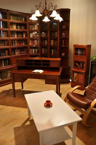 Didelė biblioteka darbo kambaryje