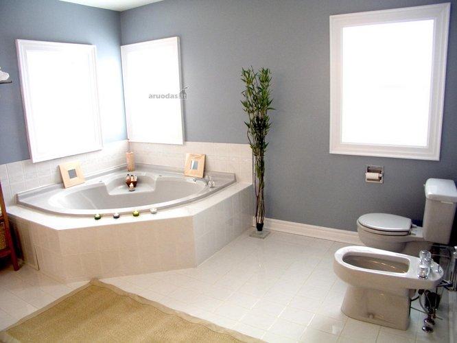 Kampinė vonia vonios kambaryje