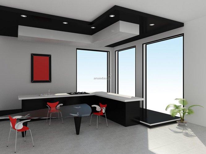Ryškių kontūrų virtuvės dizainas