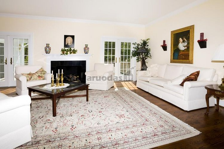 Juoda - balta židinys, derantis prie svetainės interjero spalvų