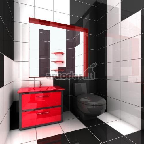 Balta - juoda - raudona tualeto interjeras