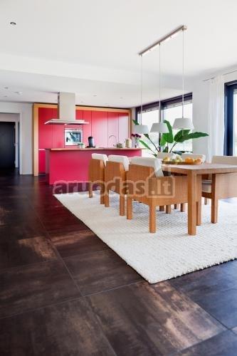 Rausva spalva atskirta virtuvės erdvė