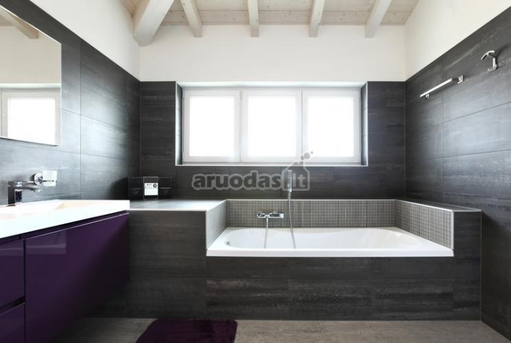 Pilka - balta vonios kambario interjeras