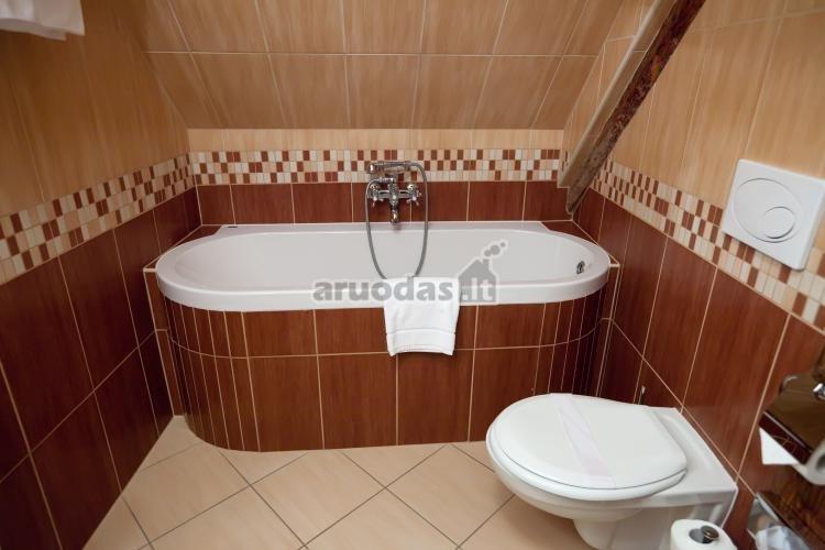 Ruda - balta vonios kambario interjeras