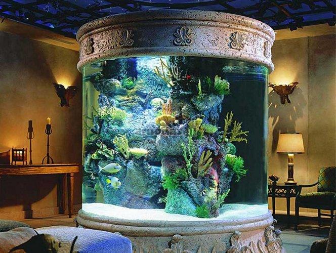 Didelis akvariumas - ryškus kambario akcentas