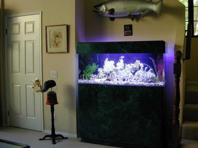 Akvariumo apšvietimas