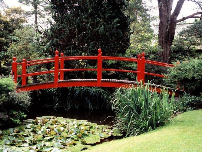Raudonas tiltelis per kūdrą