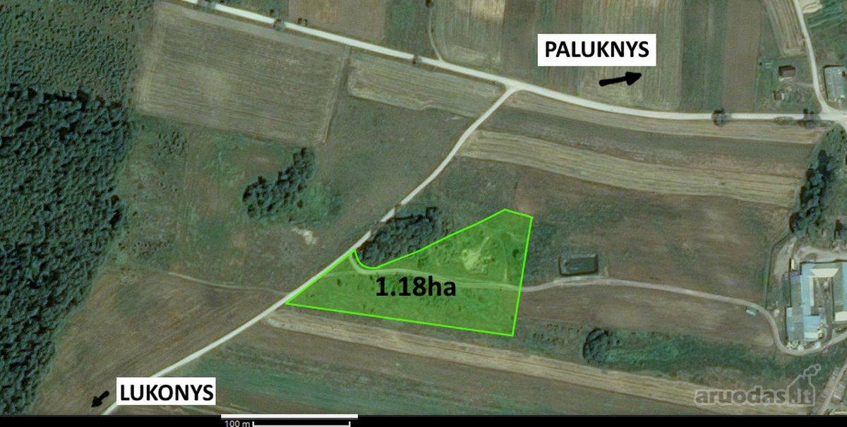 Trakų r. sav., Paluknio k., Lukonių g., žemės ūkio paskirties sklypas