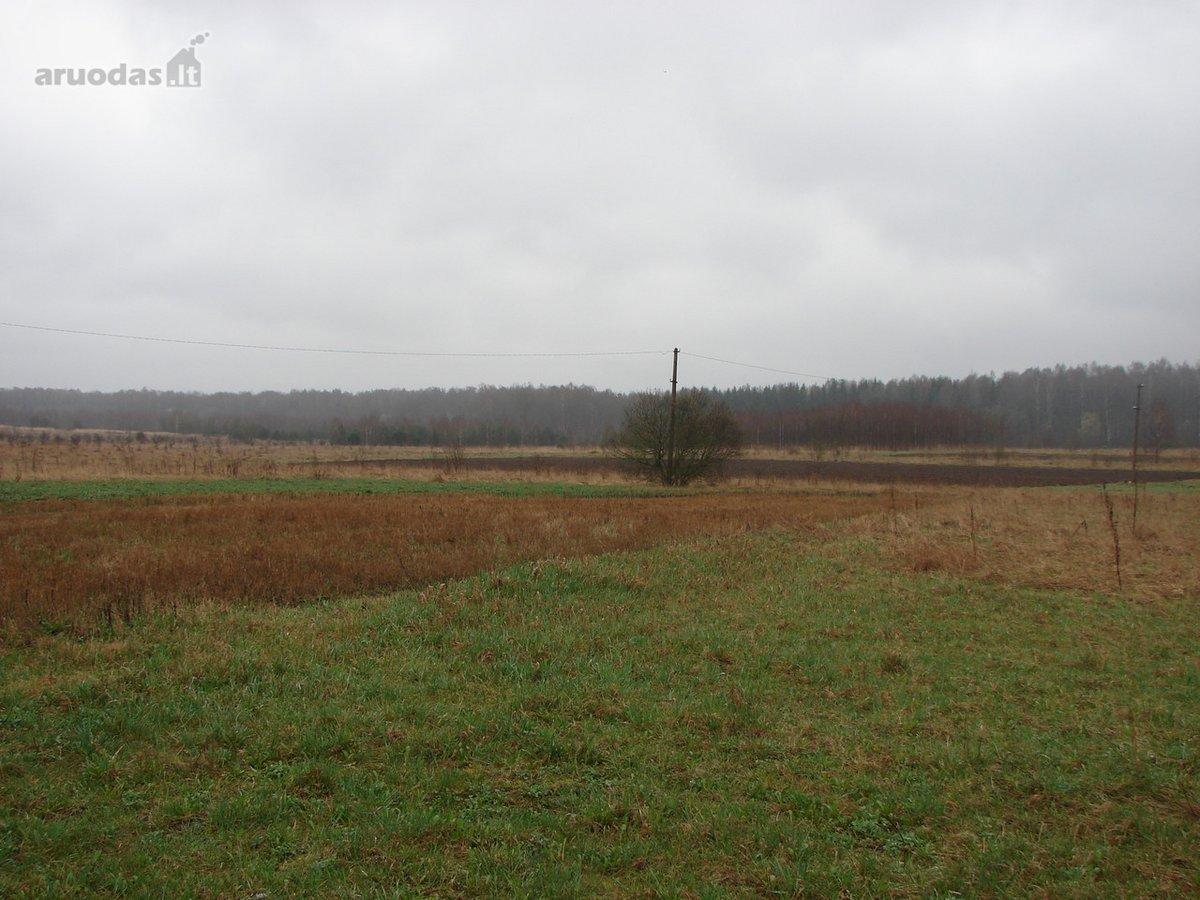 Vilnius, Salininkai, Avinėlių g., žemės ūkio paskirties sklypas