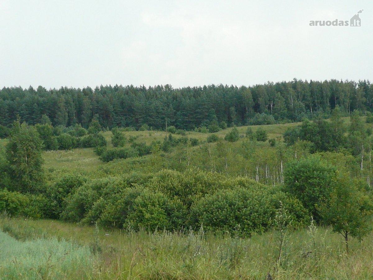 Trakų r. sav., Aukštadvario mstl., namų valdos paskirties sklypas