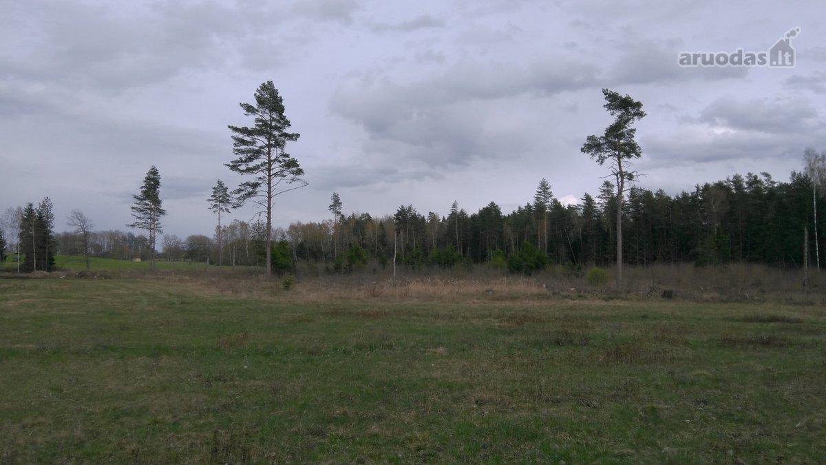 Varėnos r. sav., Jurgiškių k., miškų ūkio paskirties sklypas