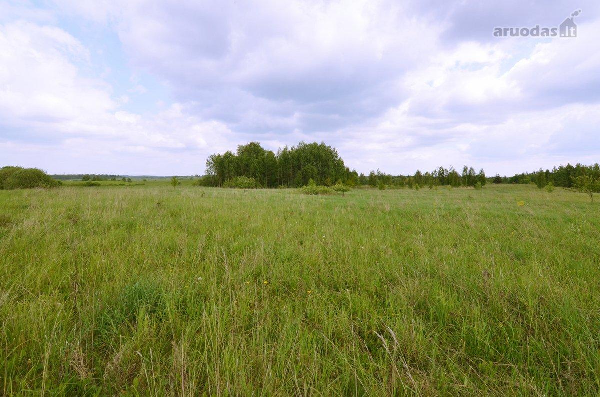 Vilniaus r. sav., Medviediškių k., žemės ūkio paskirties sklypas