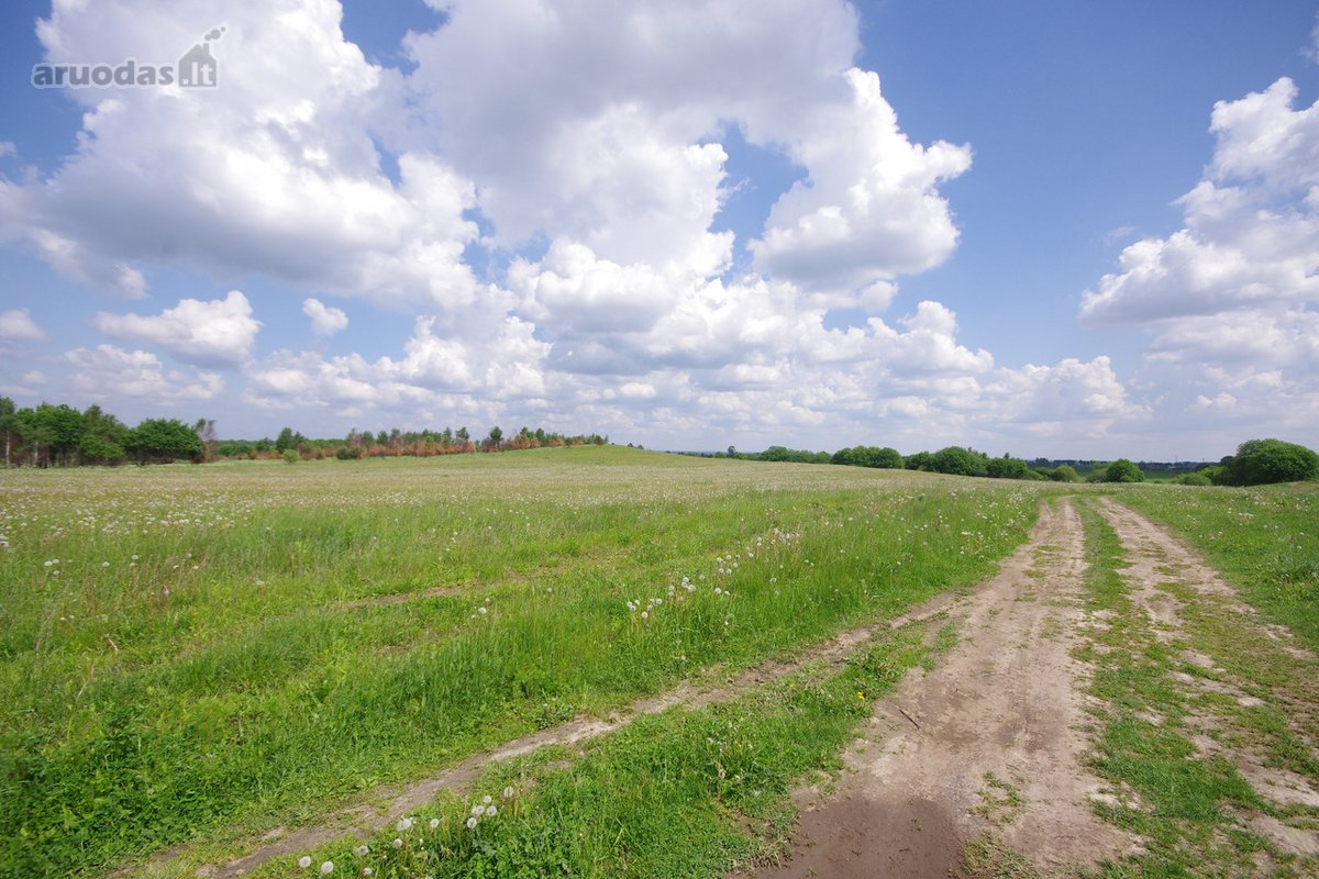 400 m iki Šumsko pl.