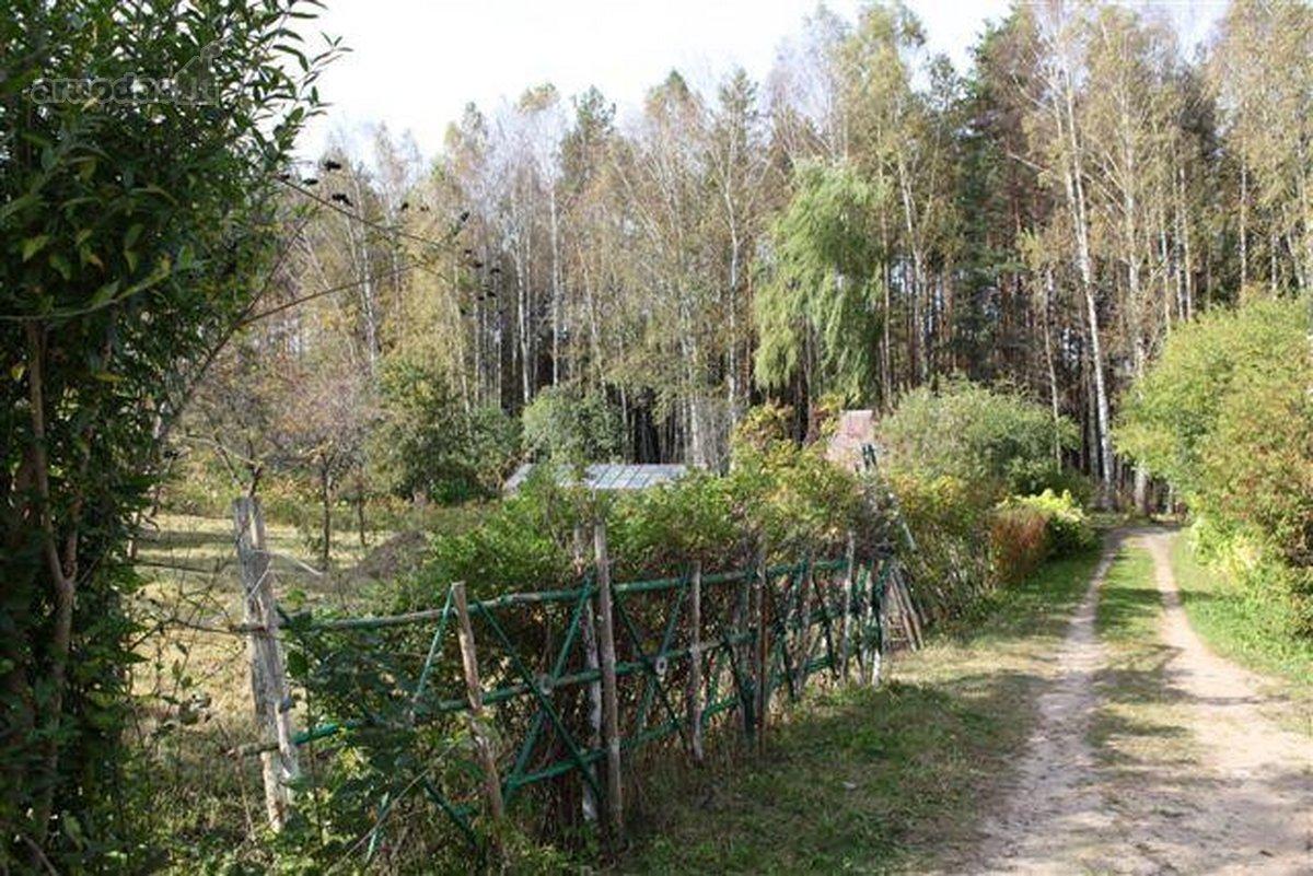Vilniaus r. sav., Baronų k., kolektyvinis sodas sklypas