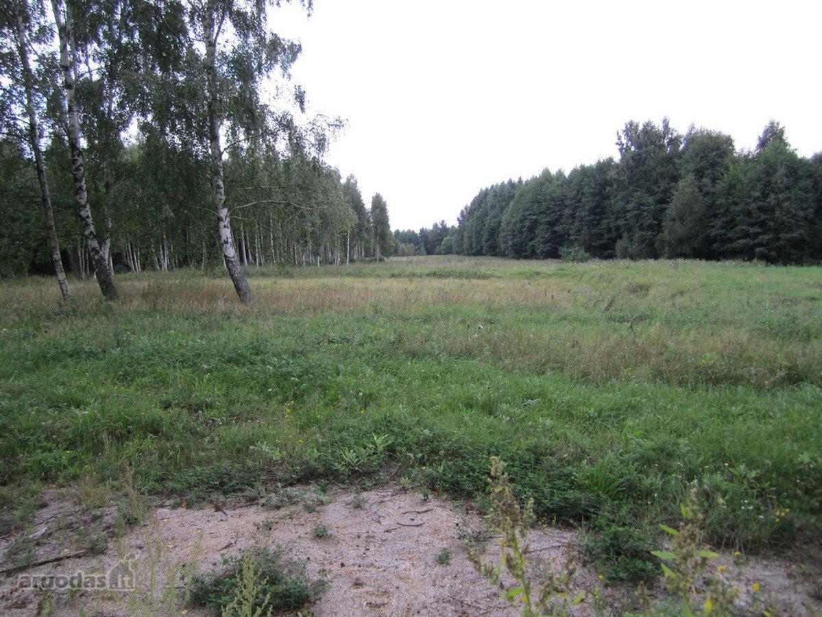 Klaipėdos r. sav., Šaipių k., žemės ūkio paskirties sklypas