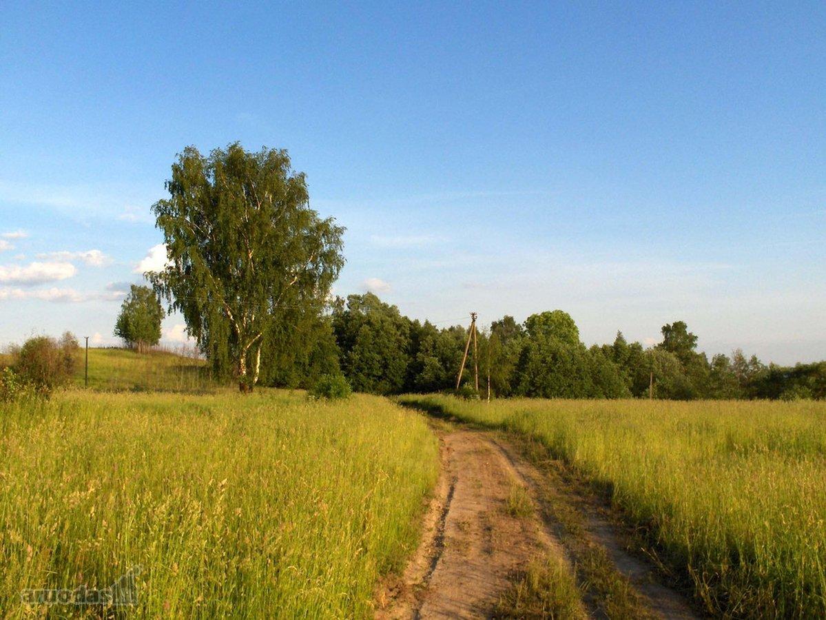 Utenos r. sav., Mineiškiemio k., žemės ūkio paskirties sklypas