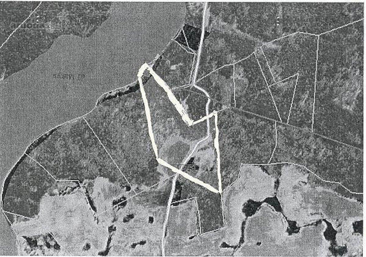 Molėtų r. sav., Petrikiškių k., namų valdos, miškų ūkio paskirties sklypas