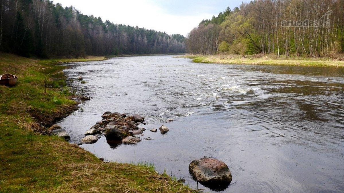 Vilniaus r. sav., Malūno vs., žemės ūkio, miškų ūkio paskirties sklypas