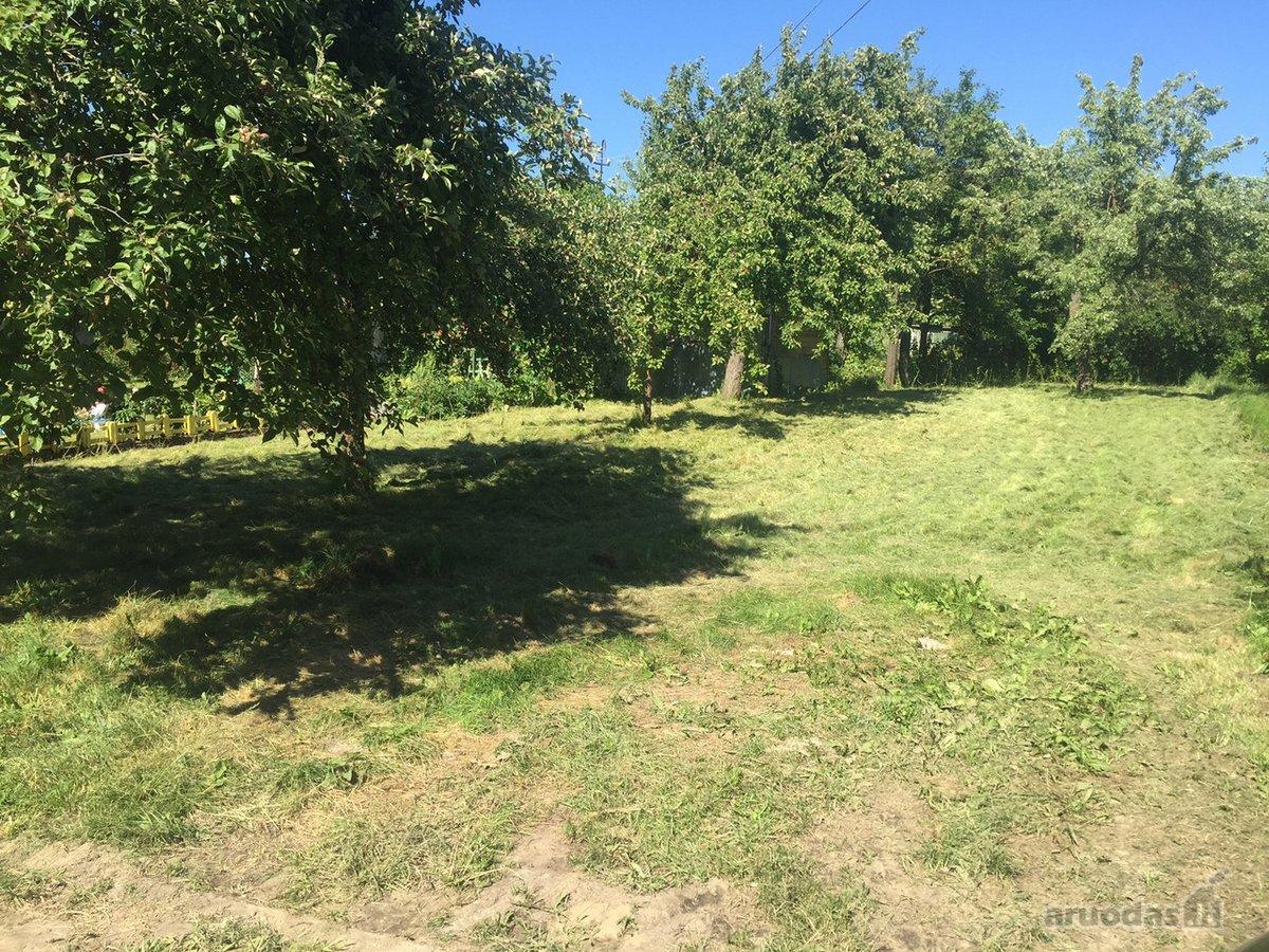 Klaipėda, Mokyklos, Renetų g., kolektyvinis sodas sklypas