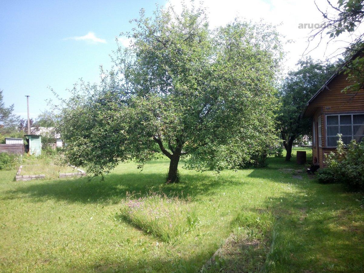 Prienų r. sav., Papilvio k., Pelėdų g., karkasinis sodo namas