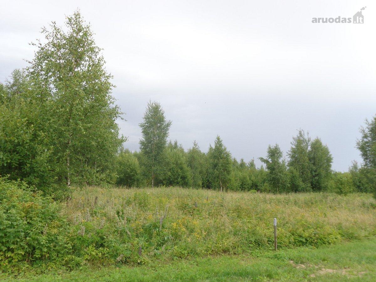 Vilnius, Pavilnys, Kuodiškių g., namų valdos paskirties sklypas